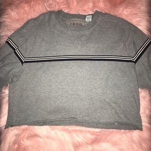 Vintage gray cropped long sleeve